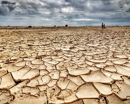 luchamos contra el cambio climatico, empresa sostenible, 100% verde